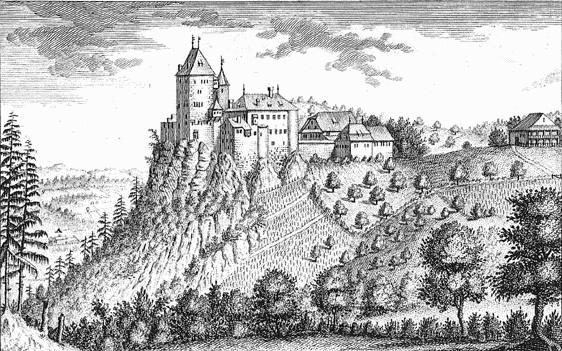 Chateau de Wildenstein