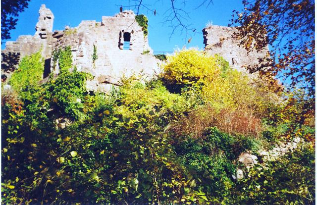 Chateau du Frankenbourg