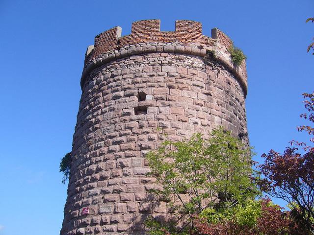 Chateau du Haut-Ribeaupierre