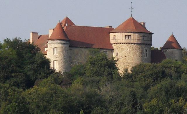 Château de Chaussins