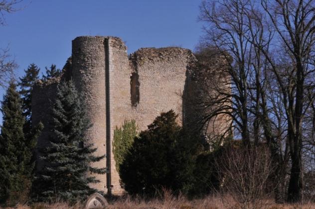 Donjon de Jouy