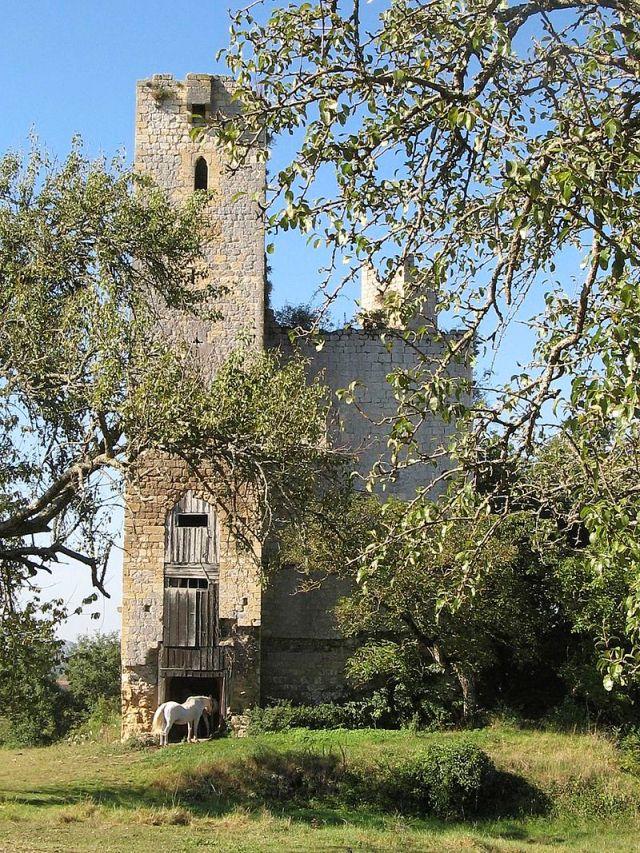 Château du Tauzia