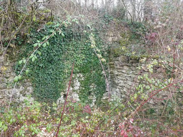 Castrum d'Andone