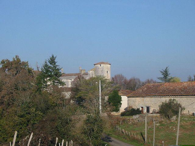 Château de Puyvidal