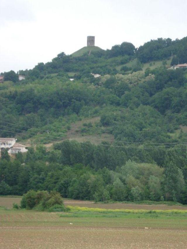 Château d'Albon