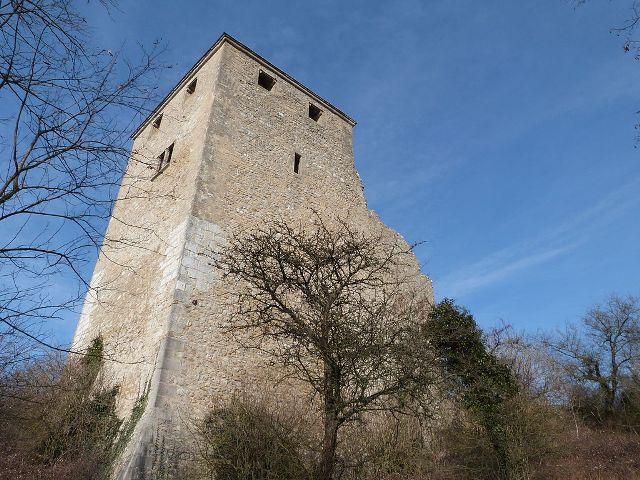 Château de Saint-Denis-en-Bugey